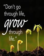 Go Through Life or Grow Through Life