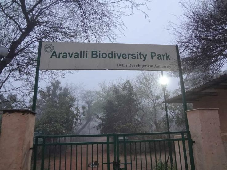 Excursion: Aravalli Biodiversity Park